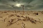 Studiu: Caderea Imperiului Roman s-a produs si din cauza schimbarilor climatice.